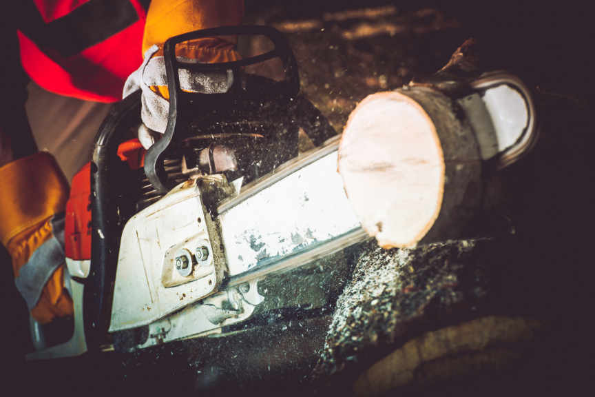 Logs Cutting Wood Cutter Closeup Photo. Gasoline Wood Cutter in Action.
